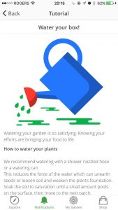managing-your-garden-tasks-08-water